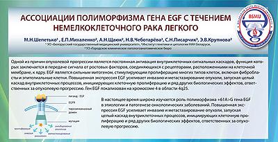 На фото: Ассоциации полиморфизма гена EGF с течением немелкоклеточного рака легкого, автор: shepetjko