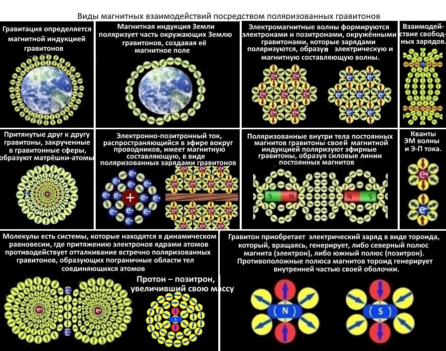 На фото: Теория фундаментальных взаимодействий   (Великое объединение состоялось), автор: tverd4