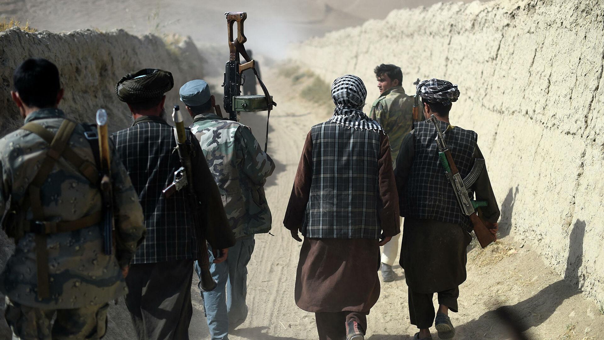 На фото: Куда двинутся талибы после Афганистана, автор: VTimoschuk
