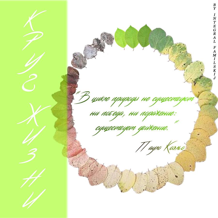 На фото: Круг жизни, автор: Integral Familskij