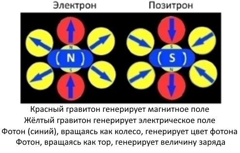 На фото: Как электроны и позитроны превращаются друг в друга, автор: tverd4