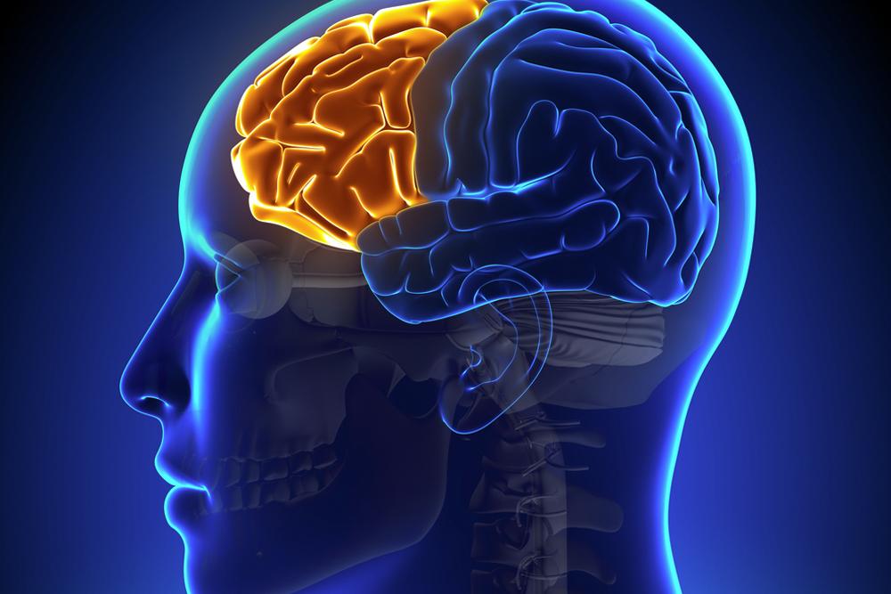 На фото: Упражнения для улучшения памяти и концентрации, автор: admin
