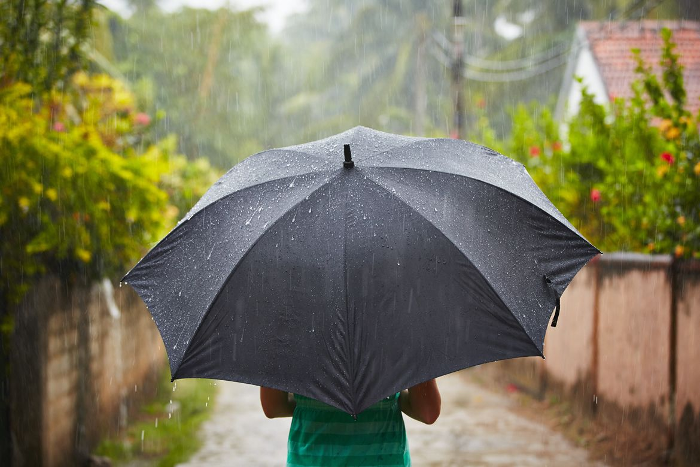 На фото: Выбираем зонтик для дождливого лета-2020 (советы мастера моды), автор: admin